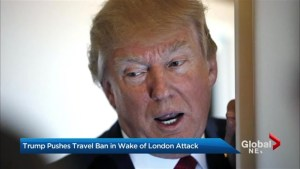 Trump slammed for using London attack to defend travel ban